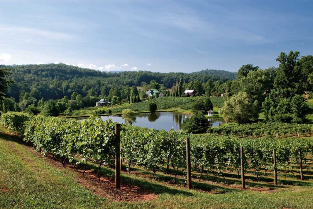 crane-creek-vineyards-view