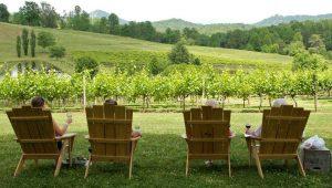 sitting-overlooking-the-winery-georgia