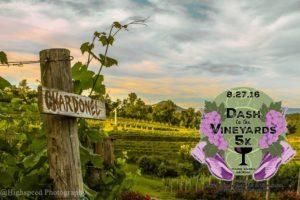 Dash to the Vineyard
