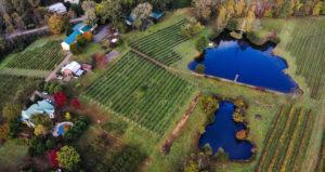 drone footage of Crane Creek Vineyeards